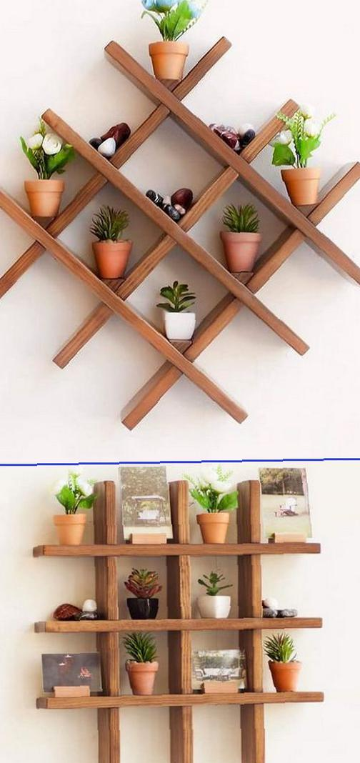 Vibrant plants decorate the home space on the walls plant, plant shelf, home decoration, home design,